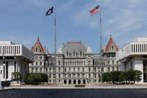 Write In Candidates for Mayor of Albany share their views