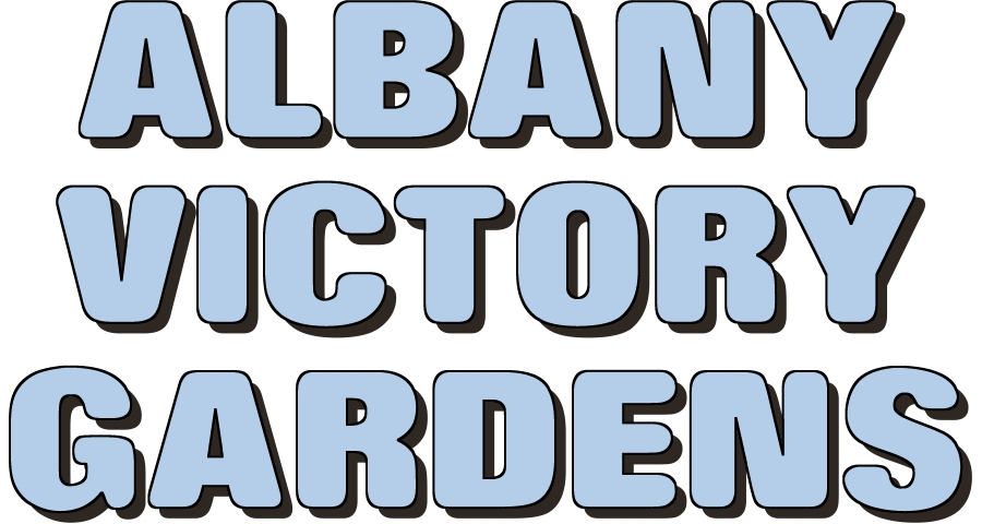 Greg Sheldon talks about the Albany Victory Gardens